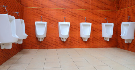 White porcelain urinals in toilets