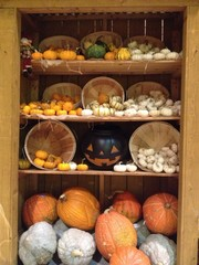 halloween pumpkins decoration
