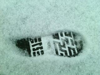 Отпечаток на снегу