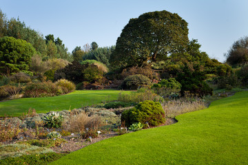 Royal  Botanic Garden Edinburgh grass