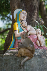 Monkey next statue Madonna and Children.Rishikesh, India