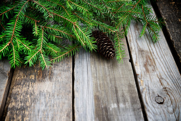 Spruce branches on a wooden background