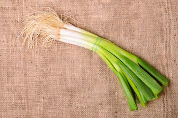 Onion on sackcloth background