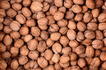 Walnut texture for background