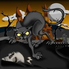 gatto nero e teschio