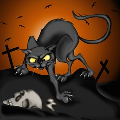 gatto nero nel cimitero