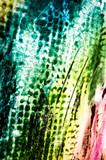 Farben Malerei abstrakt Struktur grün