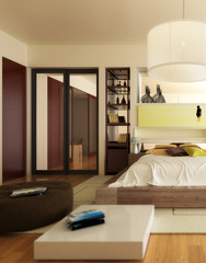 Luxury Sleeping Apartment (focus)