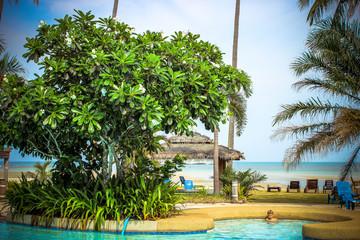 Swimming pool at luxury villa, Koh Samui
