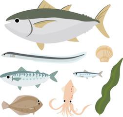 身近な魚介類