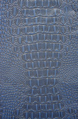 Blue Crocodile leather texture background