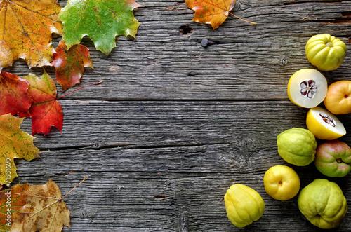 canvas print picture Herbstblätter und Quitten