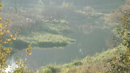 Beautiful scenery of calm river. Peaceful landscape.