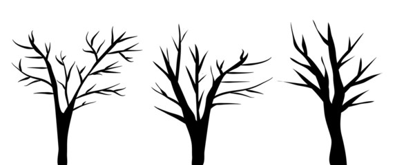 Bare Halloween Trees