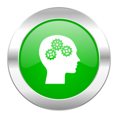 head green circle chrome web icon isolated
