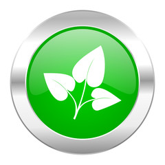 leaf green circle chrome web icon isolated