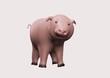 glücks schwein