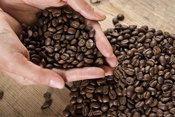 Coffee beans_5