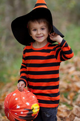 Cute boy in the park, dressed for Halloween