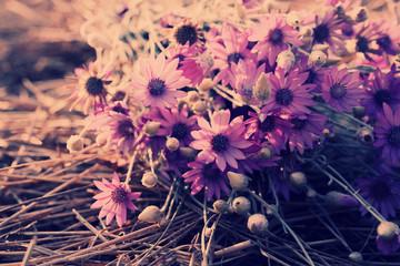 Beautiful wild flowers on straw close-up