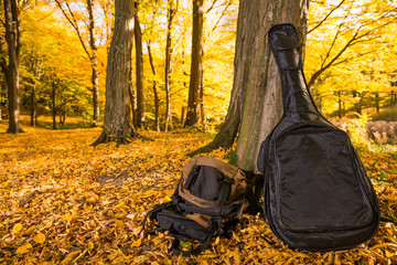 guitar and backpack at fall forest