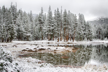 Snowy Morning at the Western Shore of the Tenaya Lake