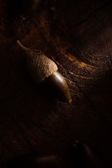 Acorn on Wooden Surface, Low Key