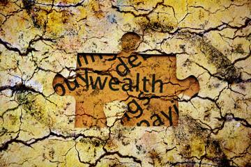 Wealth puzzle concept