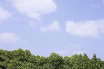 青空と雲と森林