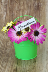 Get well card with colorful daisy flowers in green bucket
