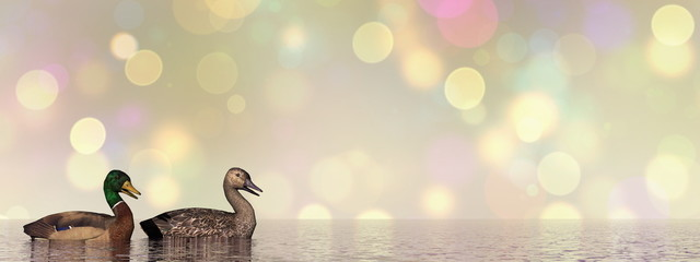 Mallard ducks - 3D render