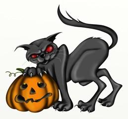 gatto con zucca di halloween