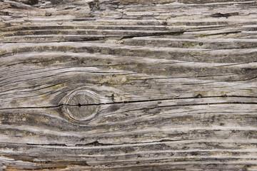 風雨にさらされた木材
