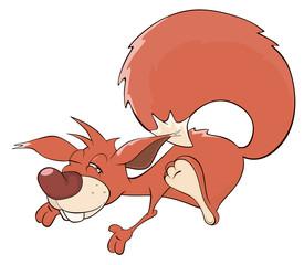 A squirrel cartoon
