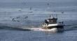 chalutier rentrant au port de pêche - 71550026