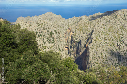 canvas print picture Berge in Mallorca