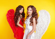 Two Attractive Women wearing in angel costume with wings isolate