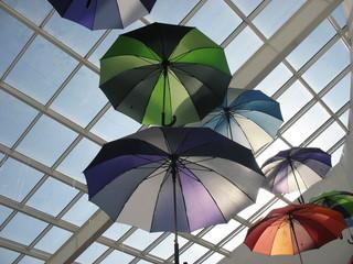 Радуга из зонтов