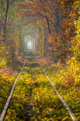 Tunnel of Love at Fall