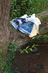 Cothing left on a tree, while young woman goes swimming