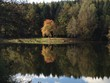 canvas print picture - Herbstspaziergang am See