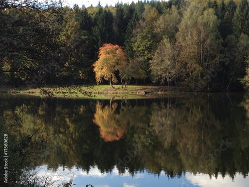 canvas print picture Herbstspaziergang am See