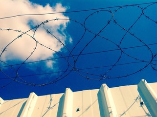 barbed wire fence with blue sky