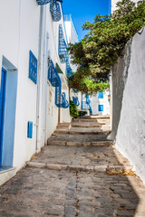 Sidi Bou Said - typical building with white walls, blue doors an