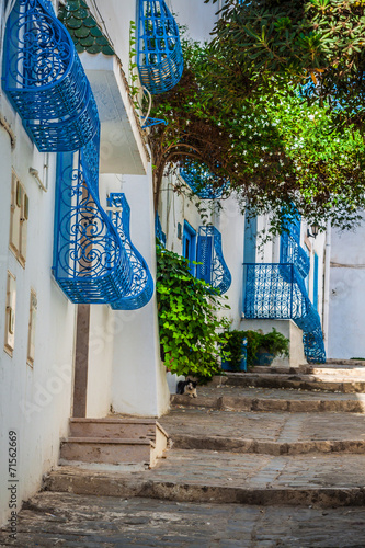 Sidi Bou Said - typical building with white walls, blue doors an © Lukasz Janyst