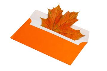 Autumn maple leaf in orange envelope