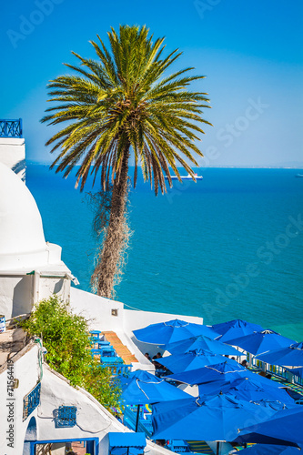 Deurstickers Tunesië Cafe with beautiful view on Sidi Bou Said harbour