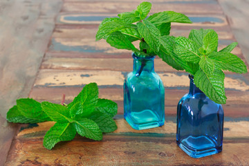 Fresh mint  in blue vase on wooden table with copy space