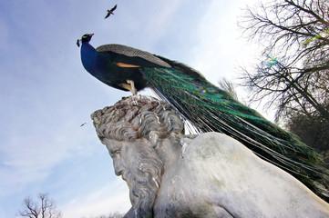 bird sitting on an antique sculpture