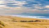 Fototapety Beach on the Atlantic Ocean near Seignosse - France, Aquitaine